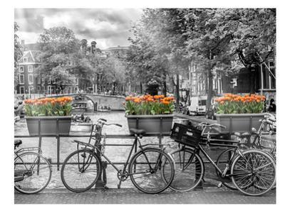 Typical Amsterdam - Panoramic View by Melanie Viola