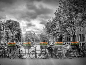 Typical Amsterdam by Melanie Viola