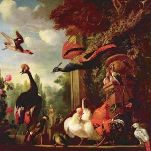 A Peacock, Peahen and Other Exotic Birds and Poultry on a Terrace by Melchior de Hondecoeter