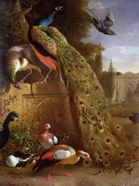 Peacock and a Peahen on a Plinth, with Ducks and Other Birds in a Park by Melchior de Hondecoeter