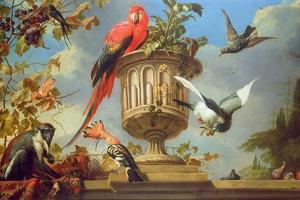 Scarlet Macaw Perched on an Urn, with Other Birds and a Monkey Eating Grapes by Melchior de Hondecoeter
