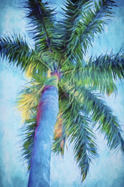 Royal Palm Caribbean II by Melinda Bradshaw