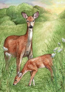 New Mother and Fawn by Melinda Hipsher