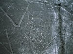 Mysterious Nazca Lines Form a Spider in the Desert by Melissa Farlow