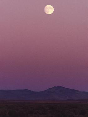The Moon Shines over the Landscape at Twilight by Melissa Farlow