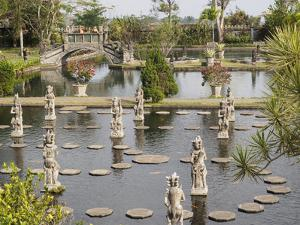 Tirta Gangga Royal Water Garden, Bali, Indonesia, Southeast Asia, Asia by Melissa Kuhnell