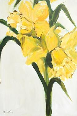 Daffodils by Melissa Lyons