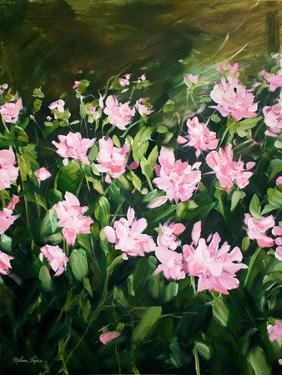 Dahlia Fields by Melissa Lyons
