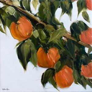Oranges by Melissa Lyons