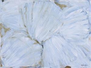 Seashells by Melissa Lyons