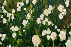White Rose Bush by Melissa Lyons