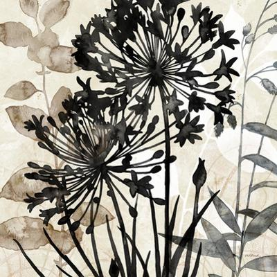 Natural Botanical 2 by Melissa Pluch