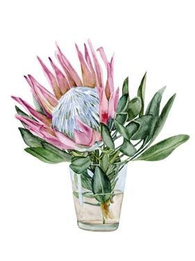 Awaken Protea II by Melissa Wang