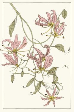 Botanical Gloriosa Lily II by Melissa Wang