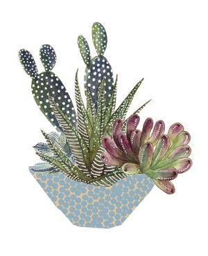 Cactus Arrangement I by Melissa Wang