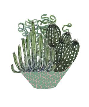 Cactus Arrangement II by Melissa Wang