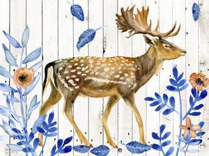 Dear Deer I by Melissa Wang
