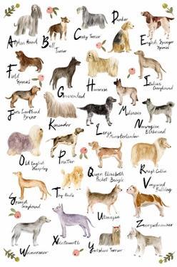 Dog Alphabet by Melissa Wang