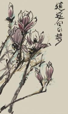 Mandarin Magnolia II by Melissa Wang