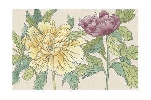 Peony Blooms II by Melissa Wang