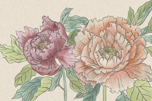 Peony Blooms IV by Melissa Wang