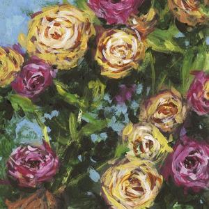 Roses in Sunlight II by Melissa Wang