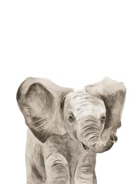 Safari Animal Portraits III by Melissa Wang