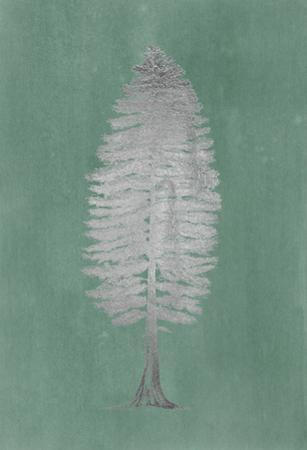 Silver Foil Pacific Northwest Tree II on Blue Green Wash by Melissa Wang