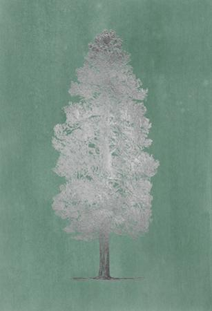 Silver Foil Pacific Northwest Tree III on Blue Green Wash by Melissa Wang