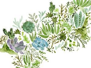 Succulent Field I by Melissa Wang