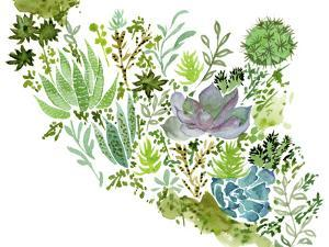 Succulent Field II by Melissa Wang