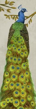 Vintage Peacock I by Melissa Wang