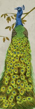Vintage Peacock II by Melissa Wang