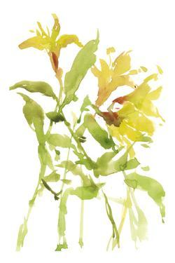 Watercolor Lilies I by Melissa Wang