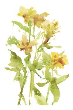 Watercolor Lilies II by Melissa Wang