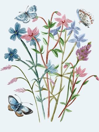Wildflowers Arrangements III