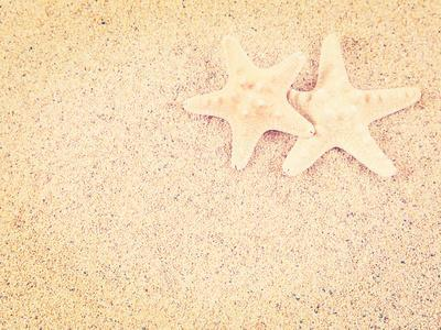 Closeup of a Starfish on the Sand of a Beach, with a Retro Effect