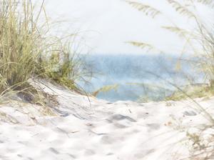 Coastal Photograpy Textured by Melody Hogan