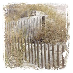 Fence By The Beach by Melody Hogan