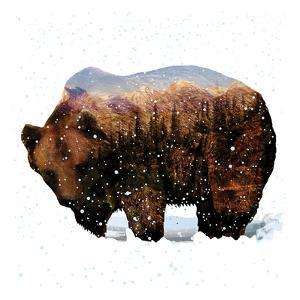 Grizzly Winter by Melody Hogan