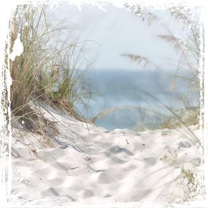 Sand Mountains by Melody Hogan