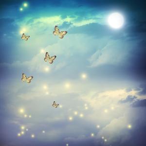 Butterflies In A Fantasy Moonligt Landscape by Melpomene