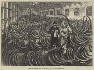 Siberian Mammoth Tusks on the Ivory Floor at the London Docks by Melton Prior