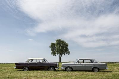 https://imgc.allpostersimages.com/img/posters/mercedes-220-sb-type-w-111-year-of-manufacture-1963-105-hp-and-mercedes-200_u-L-Q11YMR50.jpg?p=0
