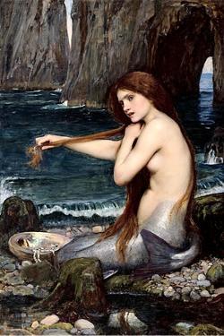 Mermaid Braiding Hair