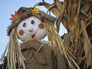 Scarecrow and Dead Corn Husks, Carnation, Washington, USA by Merrill Images