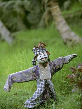 Village Scarecrow, Rice Fields, Near Tegallalan, Bali, Indonesia by Merrill Images