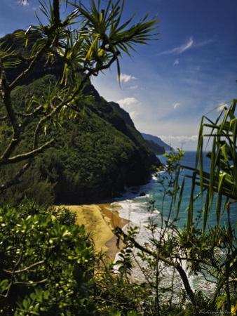 Looking Through Foliage to the Na Pali Coastline
