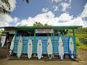 Sharks Cove Surf Shop with New Surfboards Lined Up at Front by Merten Snijders