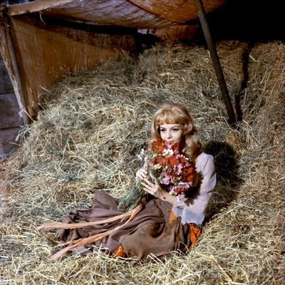 https://imgc.allpostersimages.com/img/posters/merveilleuse-angelique-1965-directed-by-bernard-borderie-michele-mercier-photo_u-L-Q1C39RU0.jpg?artPerspective=n